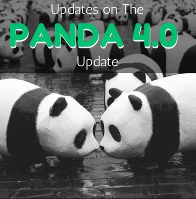 Ngày 20/5/2014 Google cập nhật thuật toán Panda 4.0